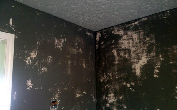 Wallpaper Removal Service Services
